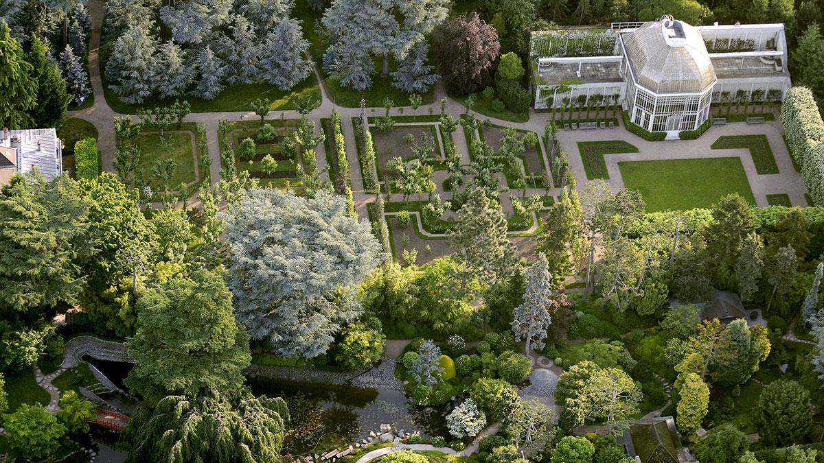 Arial view, Jardins Albert Kahn